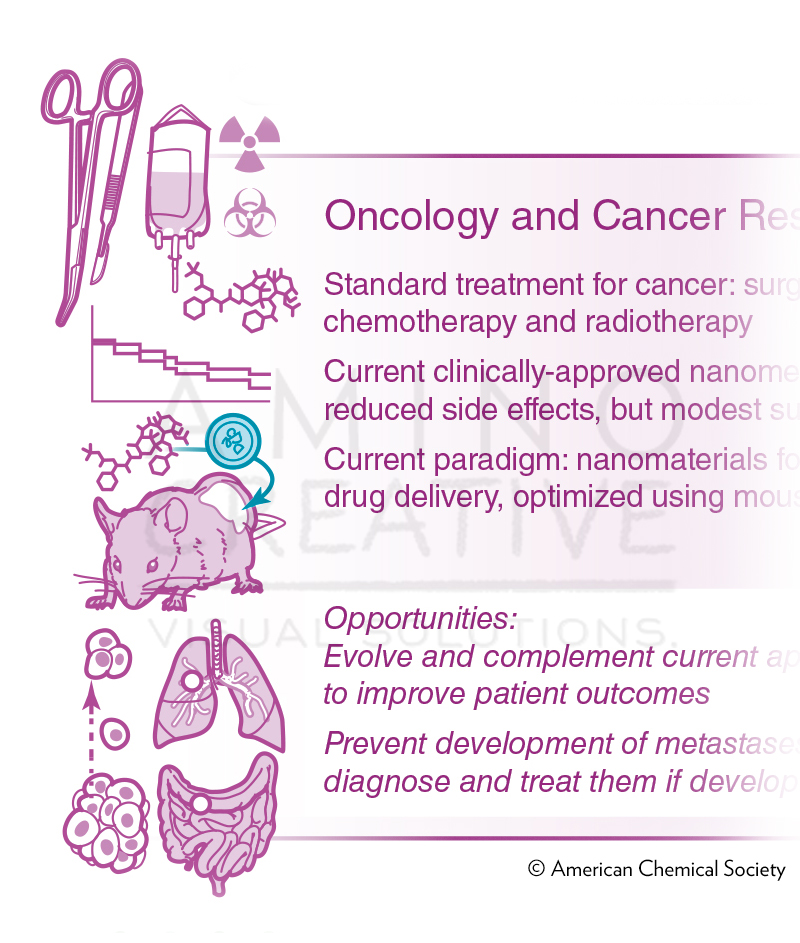Bridging Bio-nano Science and Cancer Medicine (detail)